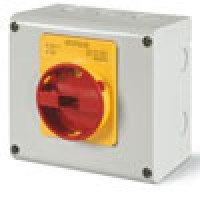 63A, 3POLE, SURFACE MOUNT, PLASTIC ENCLOSURE, EMERGENCY SWITCHING